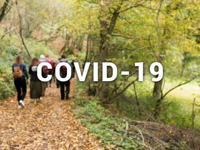Covid 19 800x600